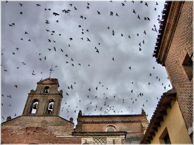 2643-Convento de Santa Clara en Tordesillas (Valladolid) #CastillayLeon #Spain