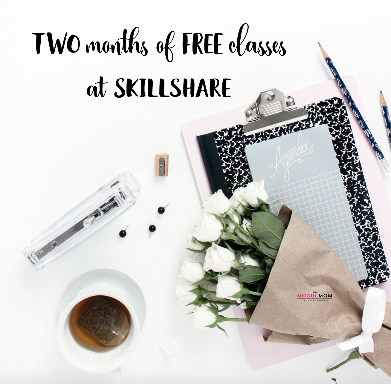 FREEBIE ALERT Skillshare has graciously offered TWO free