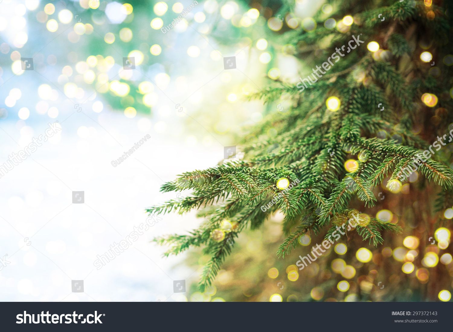 Image result for christmas evergreen background images