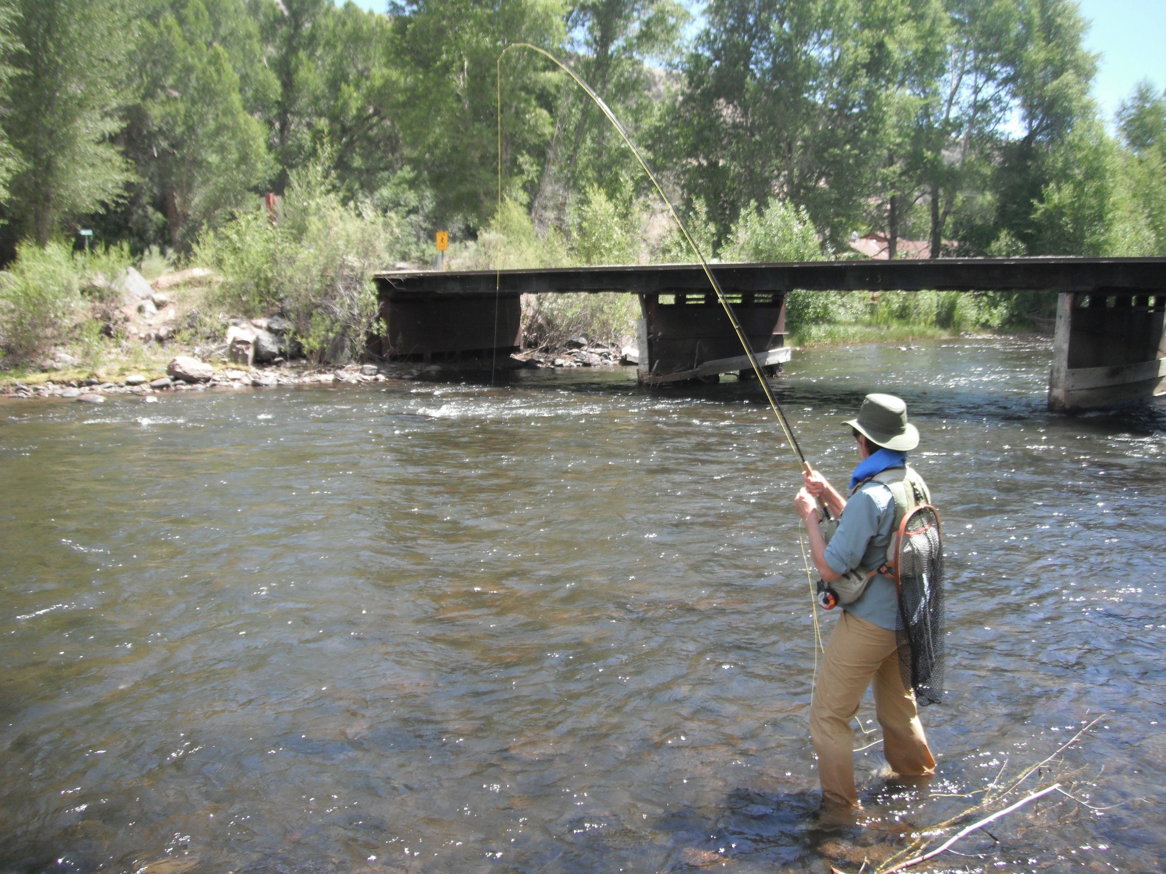 Me In Action I Hooked And Caught A Big Brown This Summer Above The Bridge At Conejos River Ranch Near Antonito Co River Fishing Fishing Photos Fly Fishing