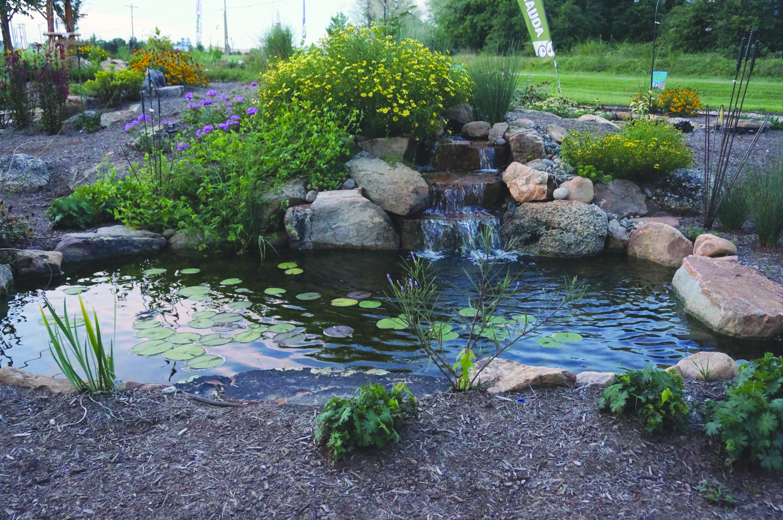 Faire Un Bassin Exterieur tranquility deluxe pond package | bassin de jardin, jardins