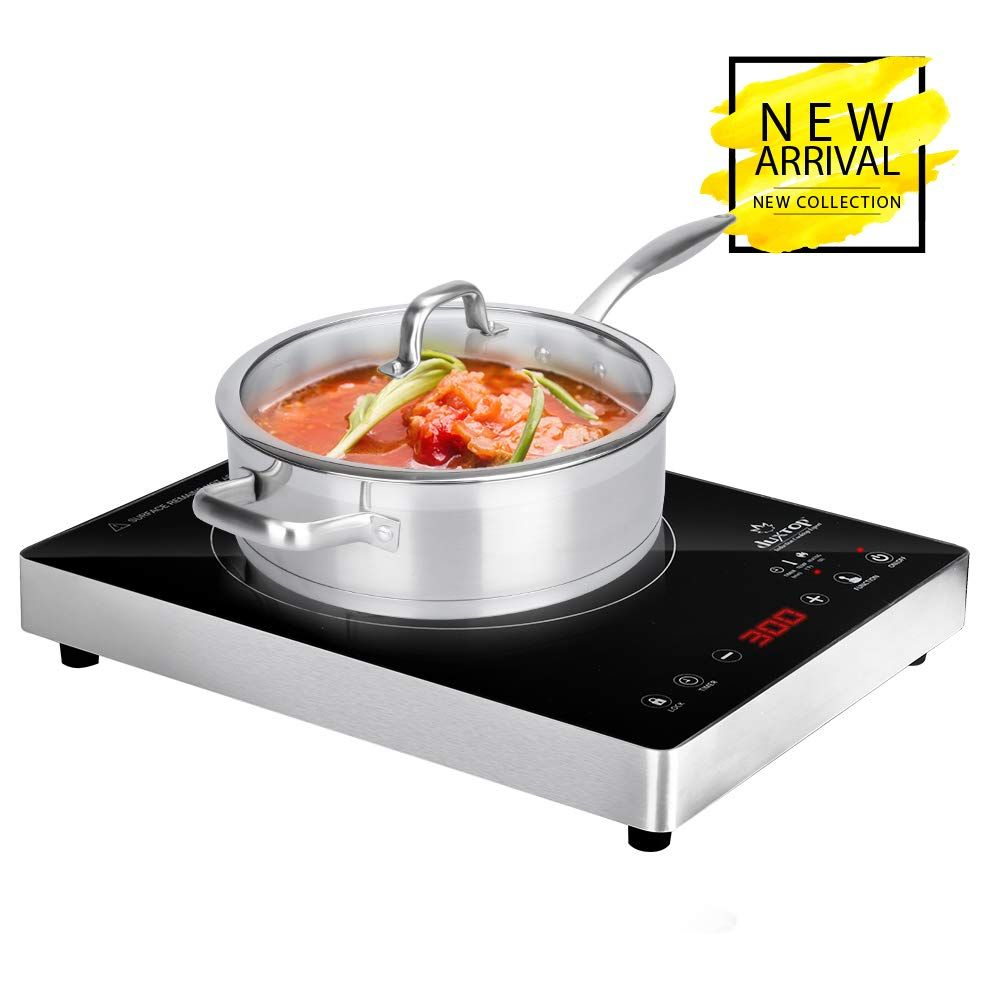 10 Best Induction Cooktop 2019 Induction Cooktop Cooktop Induction