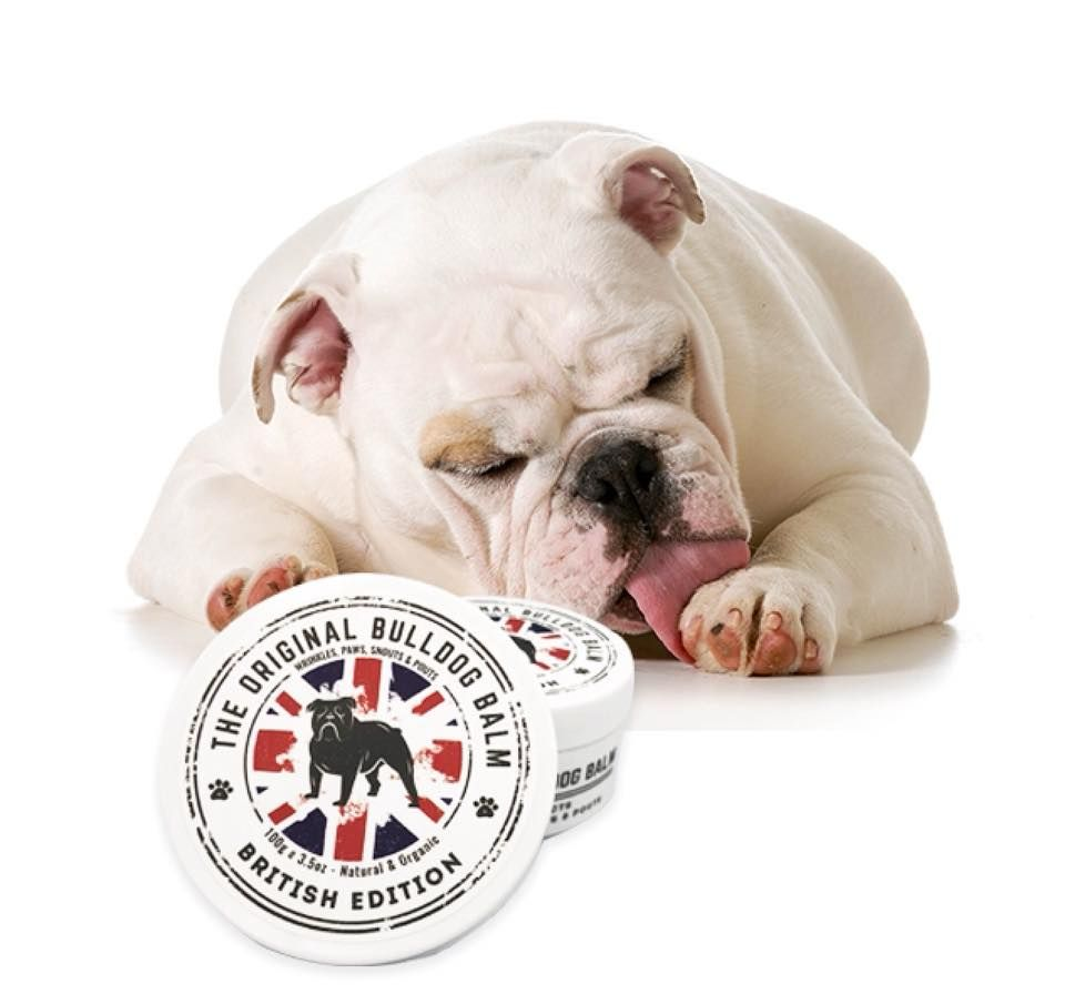British Edition Dog Nose Balm The Balm French Bulldog