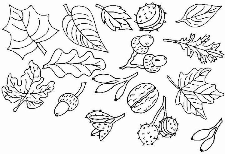 Figuras mural otoño para colorear y realizar un mural. | dibujos del ...