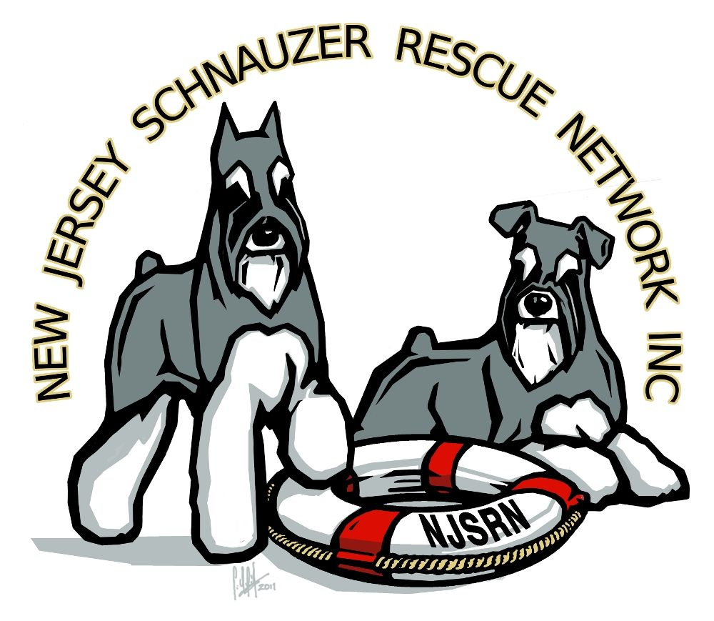This is the rescue organization that matched us up with