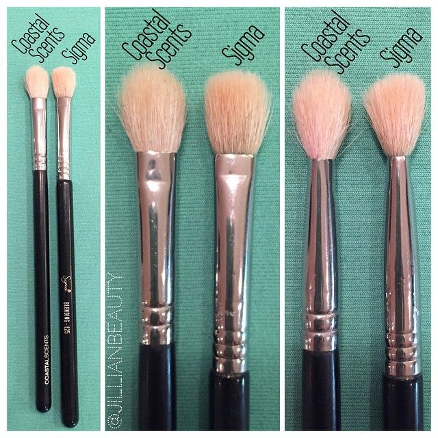 coastal scents brushes. coastal scents pro blending fluff ($5) vs sigma e25 brush ($14 brushes