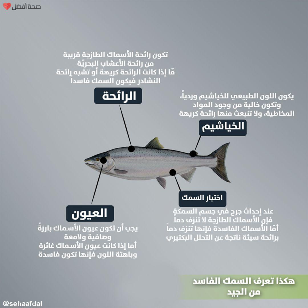 لمعرفة ما إذا كان السمك طازجا أم فاسدا ي نصح باتباع تلك النصائح Fighter Jets Fighter Things To Know