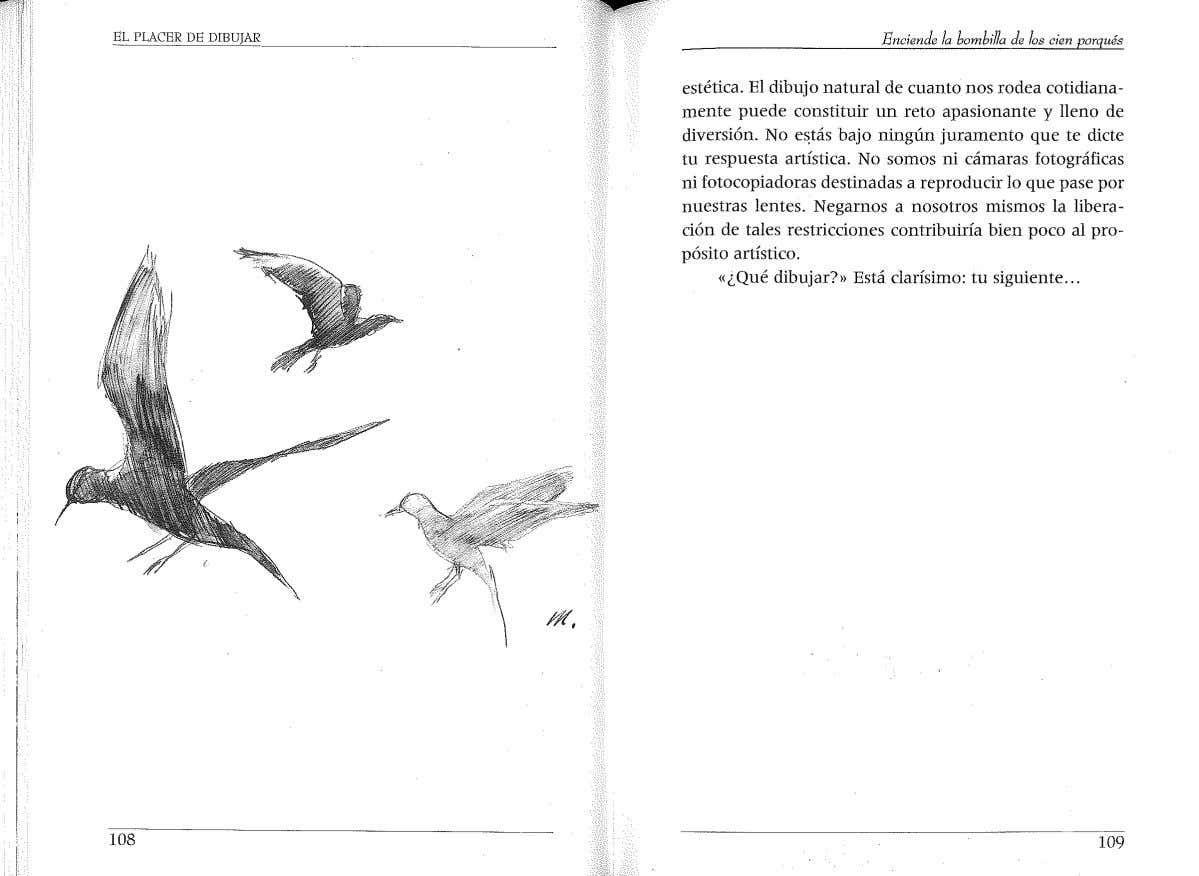 El Placer De Dibujar Placas Buscar Libros Placida