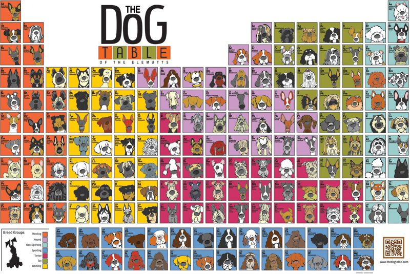 The Dog Table of the Elemutts by Angry Squirrel Studio Geekery - fresh periodic table atomic mass in parentheses