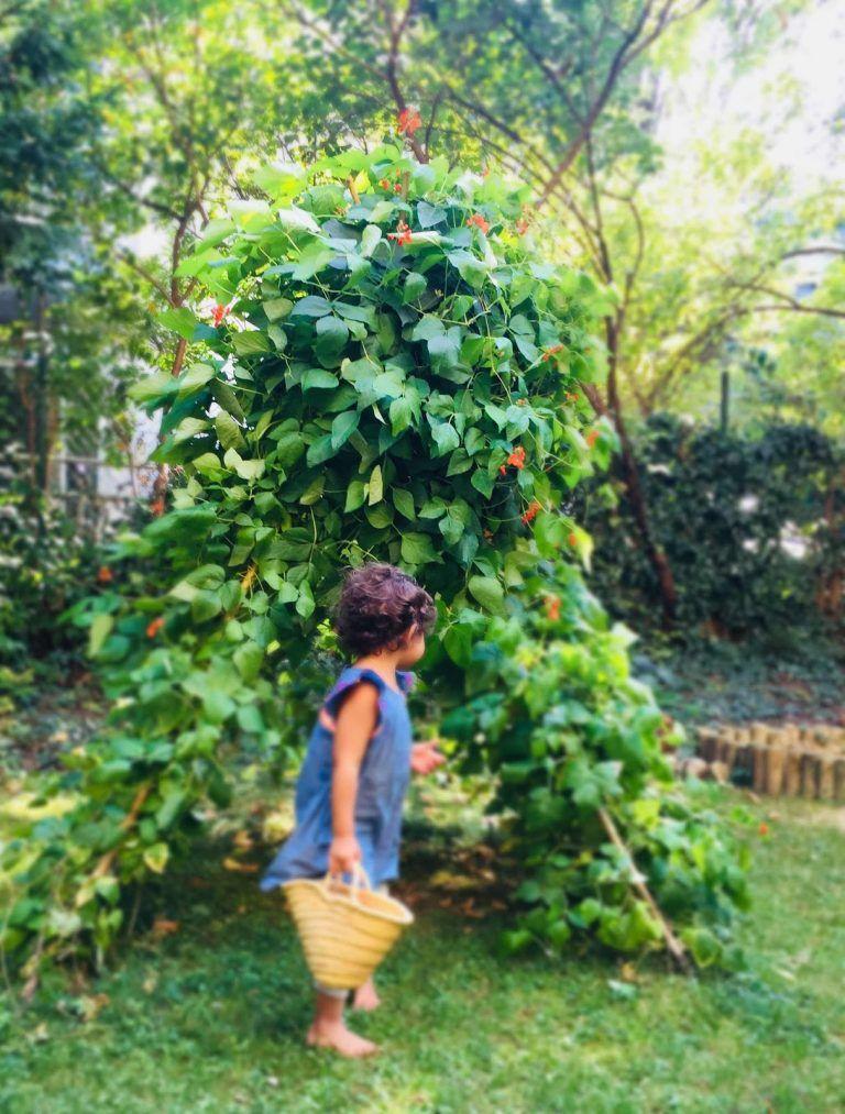 Ein Bohnenzelt Im Garten Naturbewusstsein Lieblingsbande Feuerbohne Garten Bohne