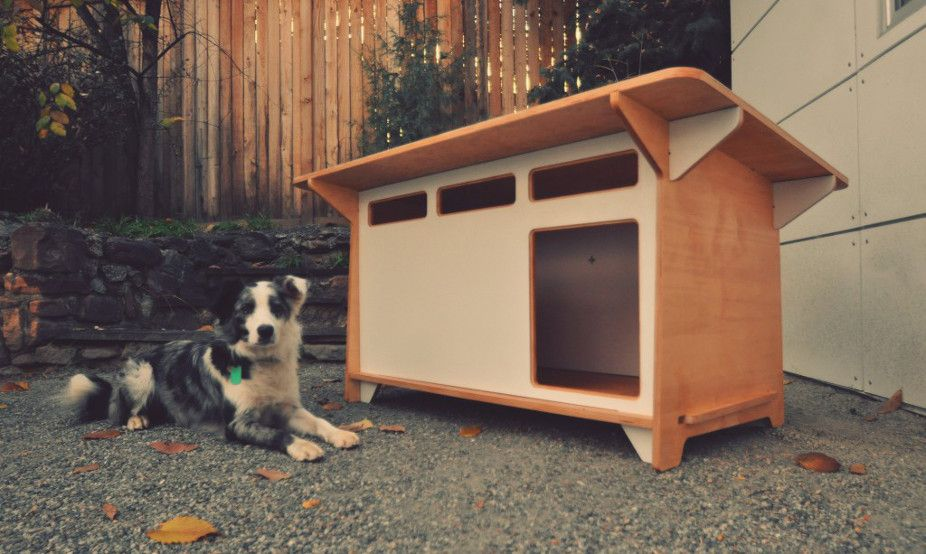 Modern Indoor Outdoor Dog House From Studio Shed Outdoor Dog