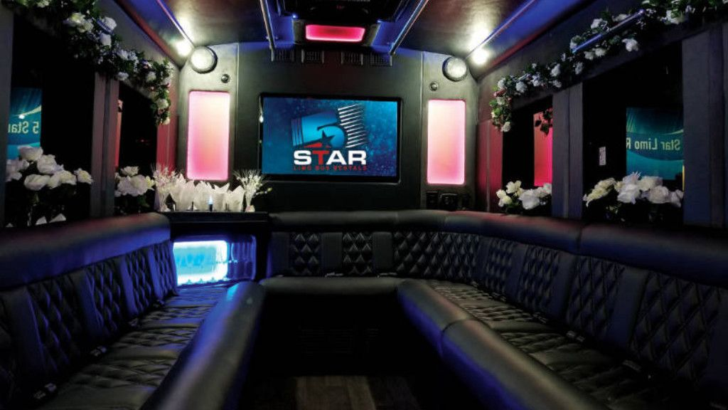 Chicago Michigan Wine Tours Party bus rental, Party bus