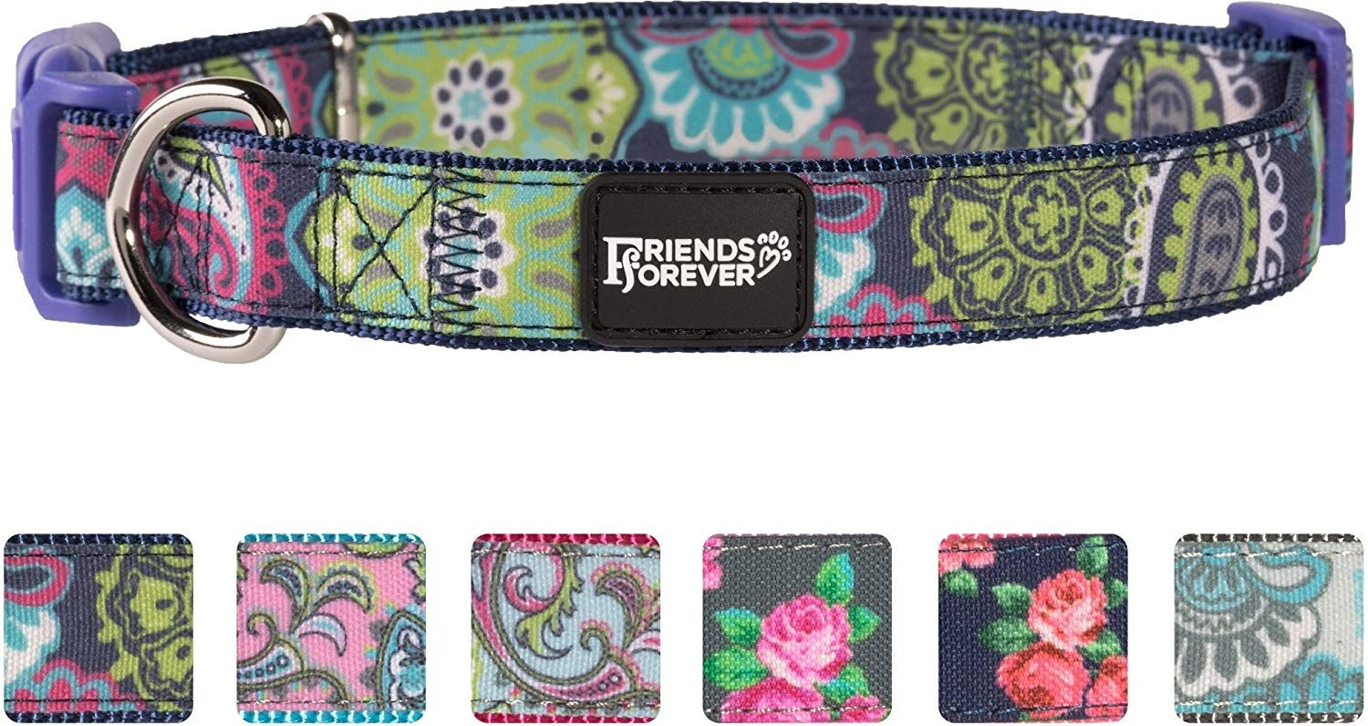 Friends forever paisley dog collar for dogs fashion print