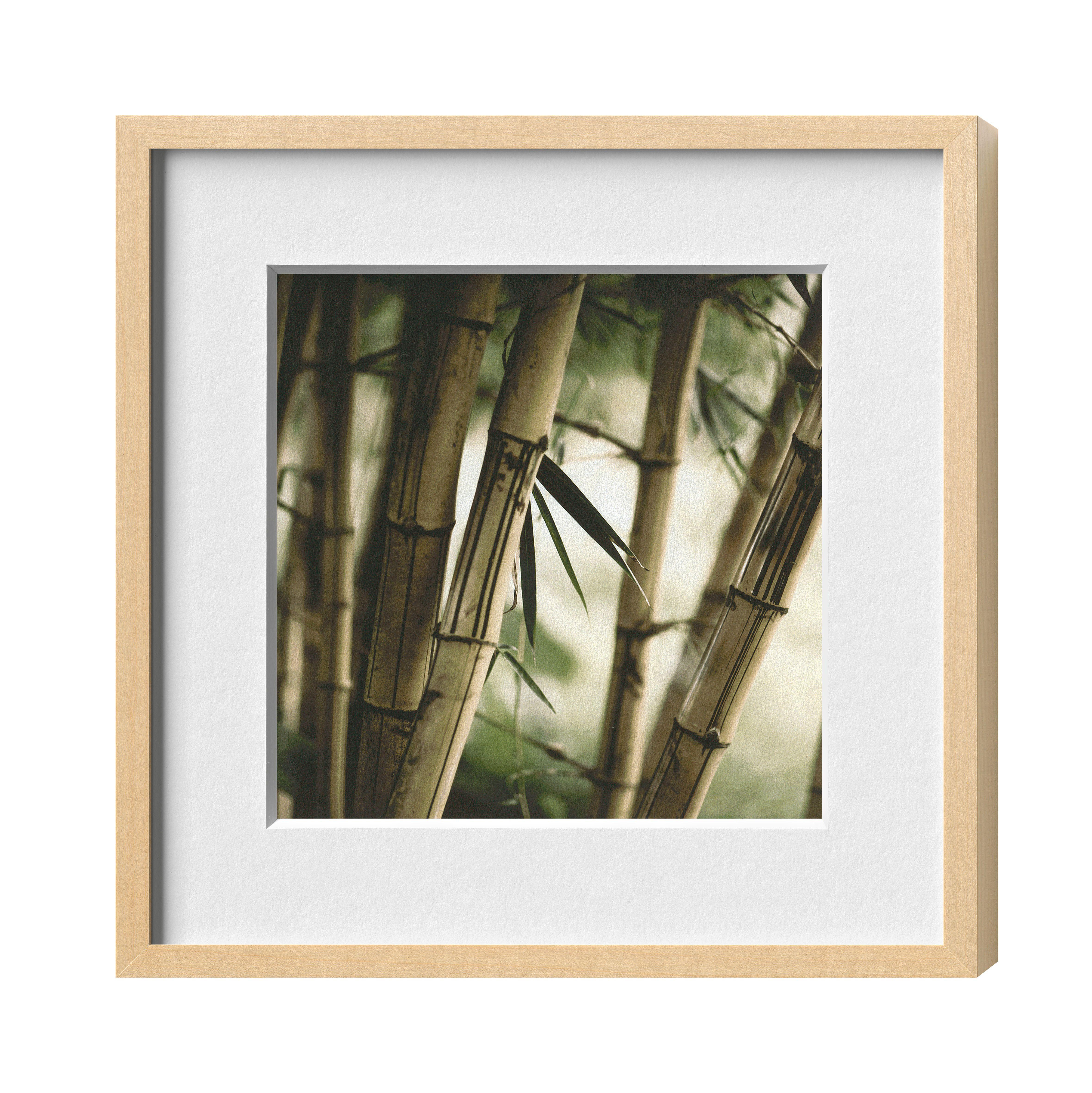 Halbe Magnetrahmen Bambus Tapete Fototapete Tapeten