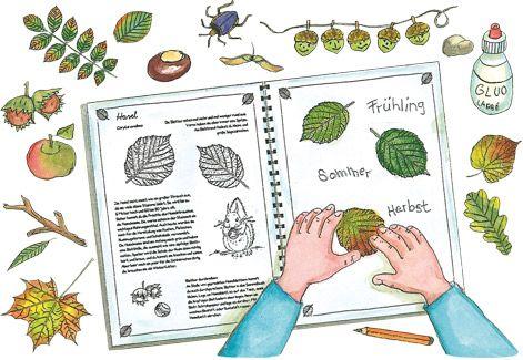 Herbarium Blätter blätter sammelbuch blätter forscher und alm