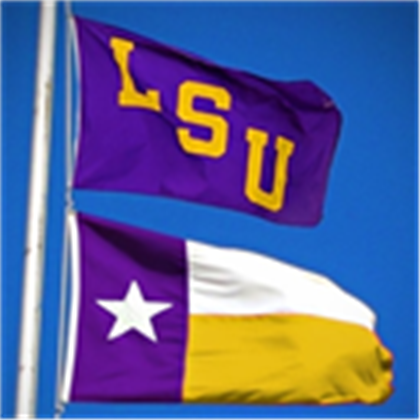 Is It Cheesy To Buy The Texas Lsu Flag I Want One So Bad Lsu Lsu Football Geaux Tigers