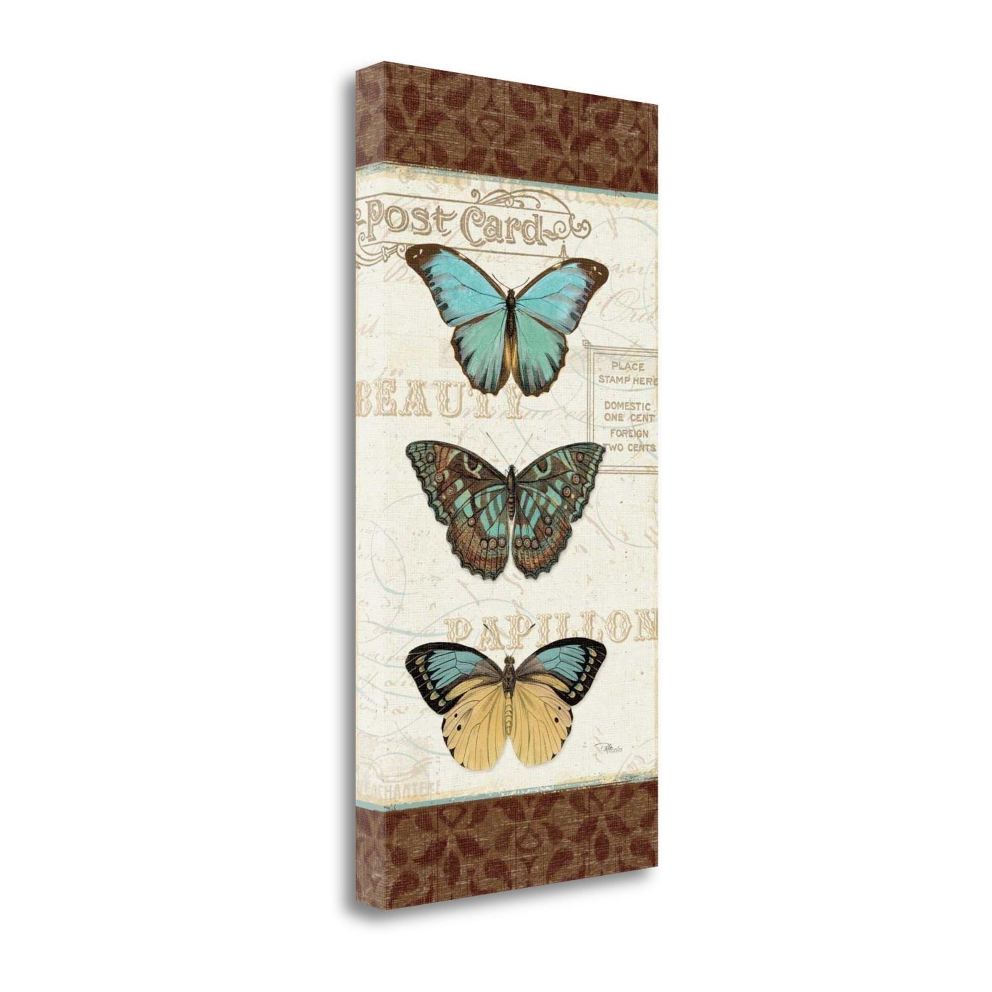 Tangletown Fine Art Papillons II By Pela Studio, Gallery Wrap Canvas, Green