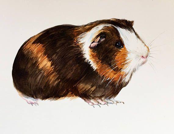 Pin On Custom Pet Portrait