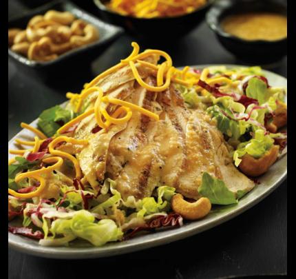 Poitrines de poulet grillées sur salade de laitue, roquette et radicchio