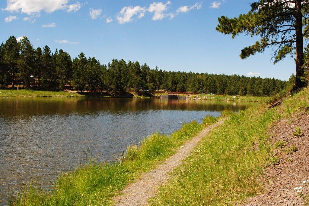 Go jump in a lake roubaix lake in the south dakota black for Pactola lake cabins