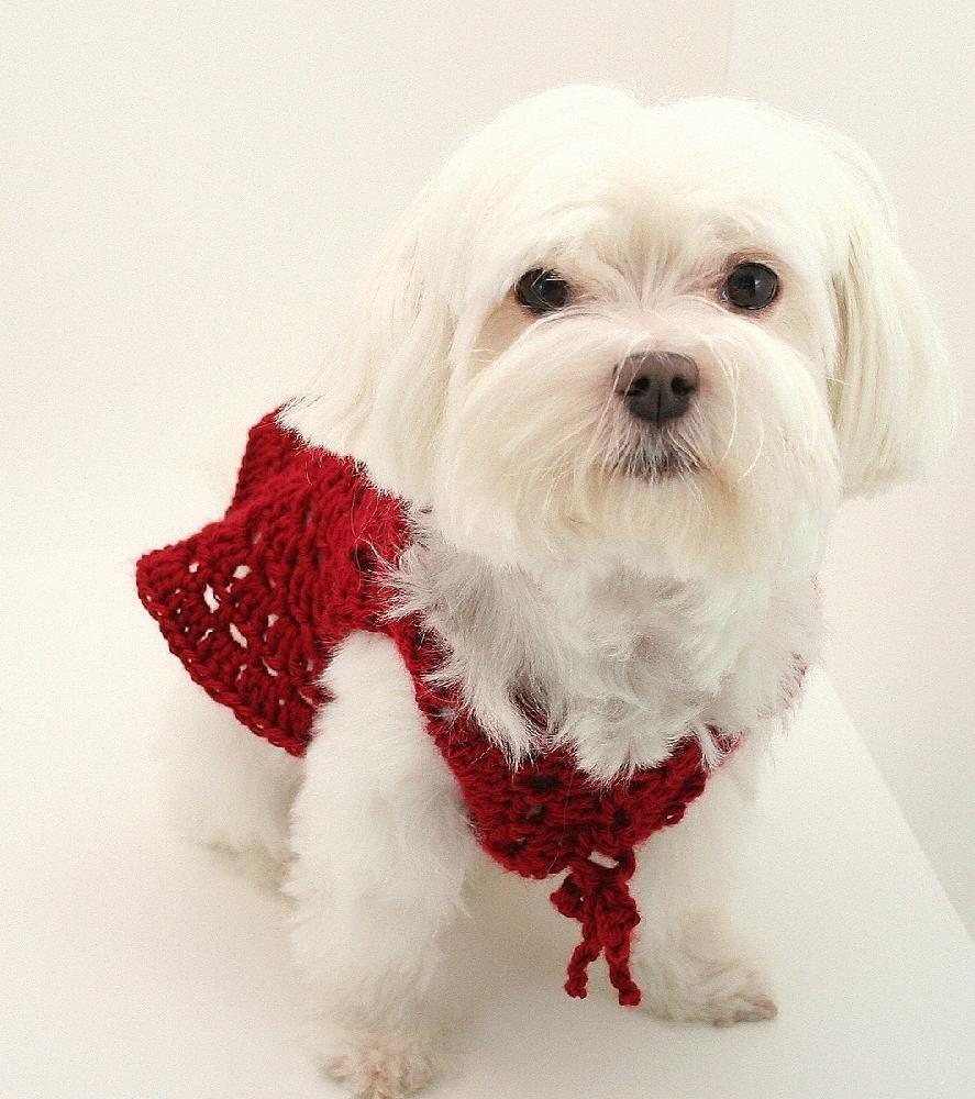 P04 Dog Sweater Circle Shrug | crochet | Pinterest