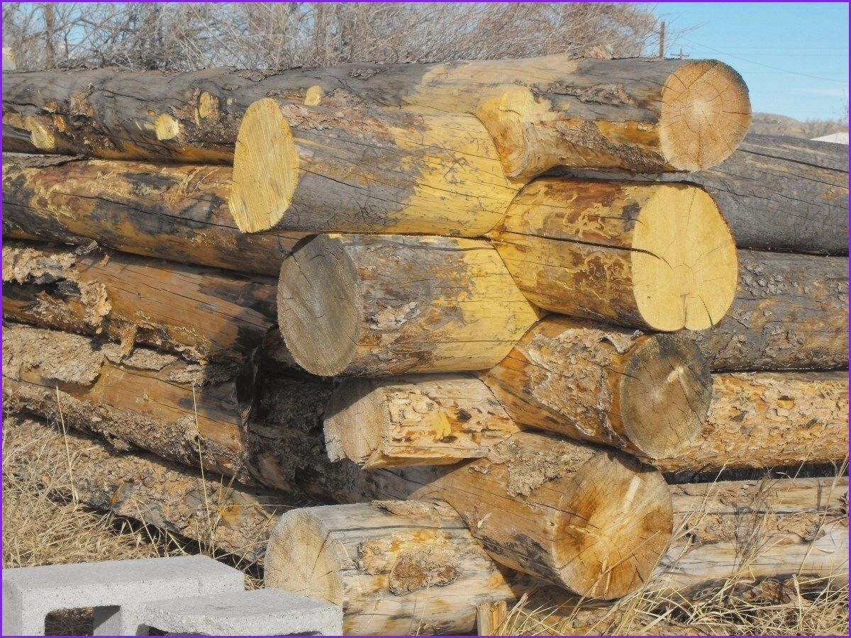 Awesome southland Log Homes Prices Southland Log Homes