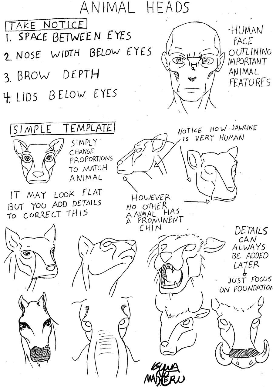 Animal Head Patterns simplified
