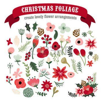 Botanical Illustration Poinsettia Google Search Christmas Prints