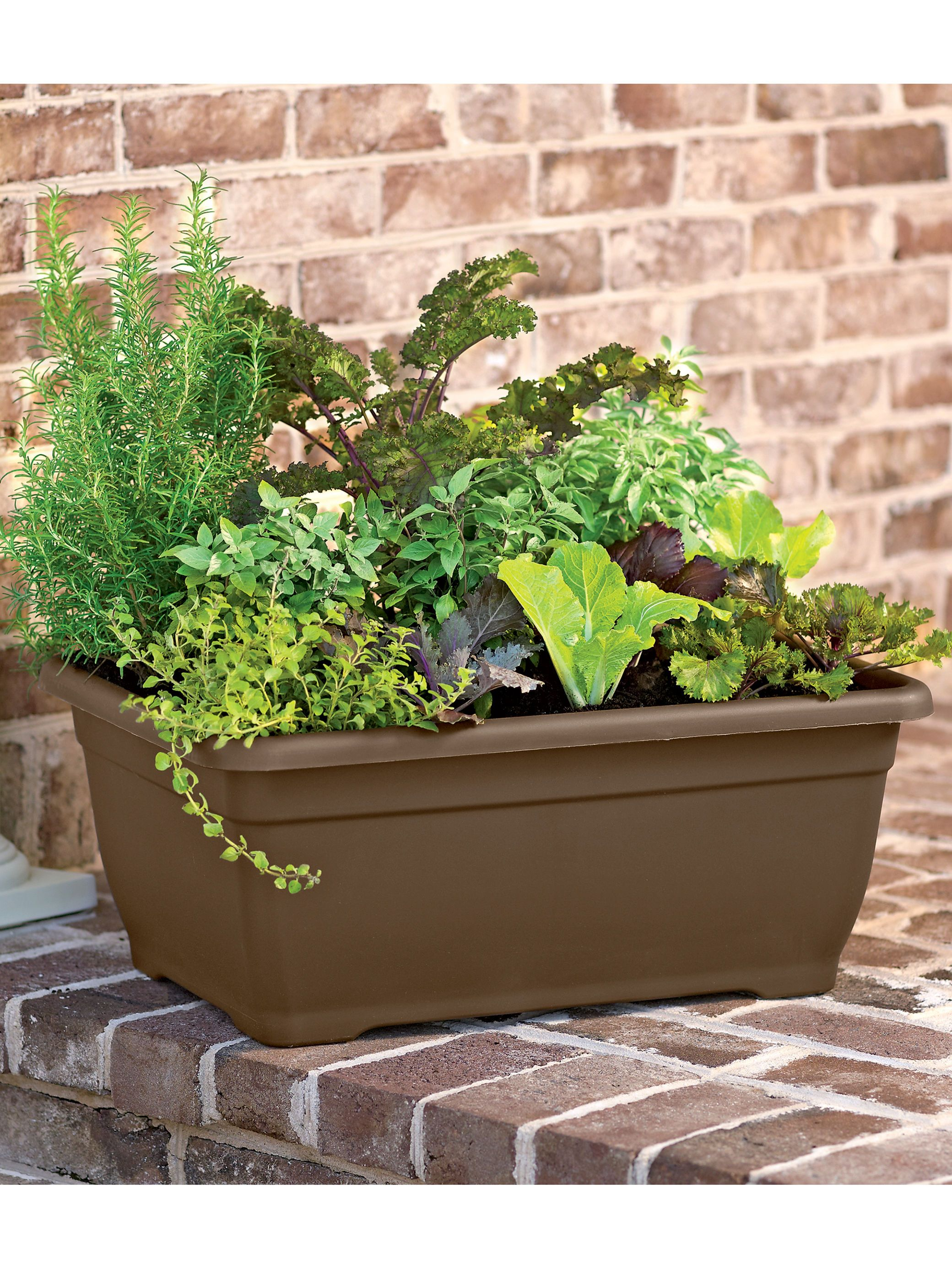 Decorative Planter Square Self Watering Planter
