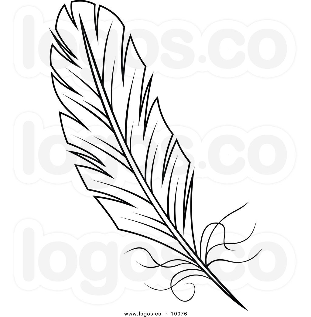 Line Drawing Of Quill : Feather clipart and white logo clip art