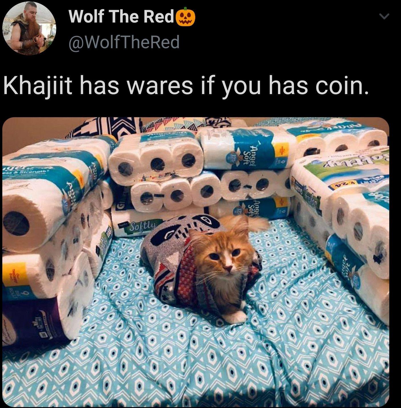 Meow Irl Best Cat Memes Cat Memes Funny Cat Memes