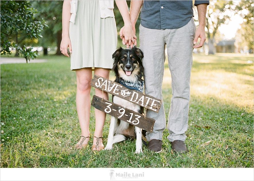 Unique Save The Date Pictures With Dogs Save the date