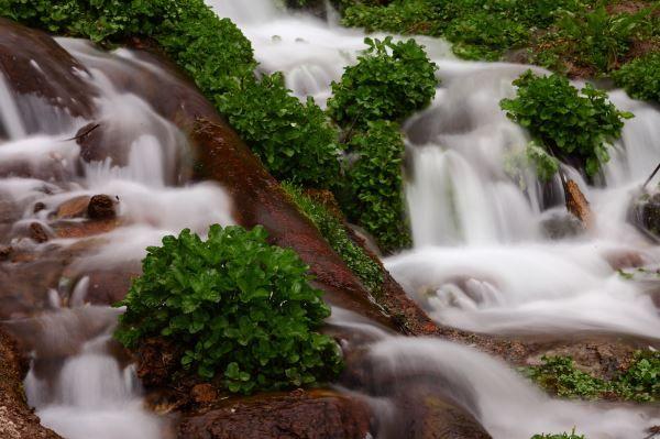 Idaho Falls Magazine   Idaho outdoors, Idaho, Idaho falls