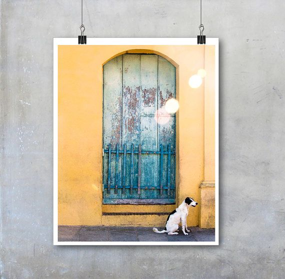 Cuba wall art travel photography black and white dog Cuban home ...