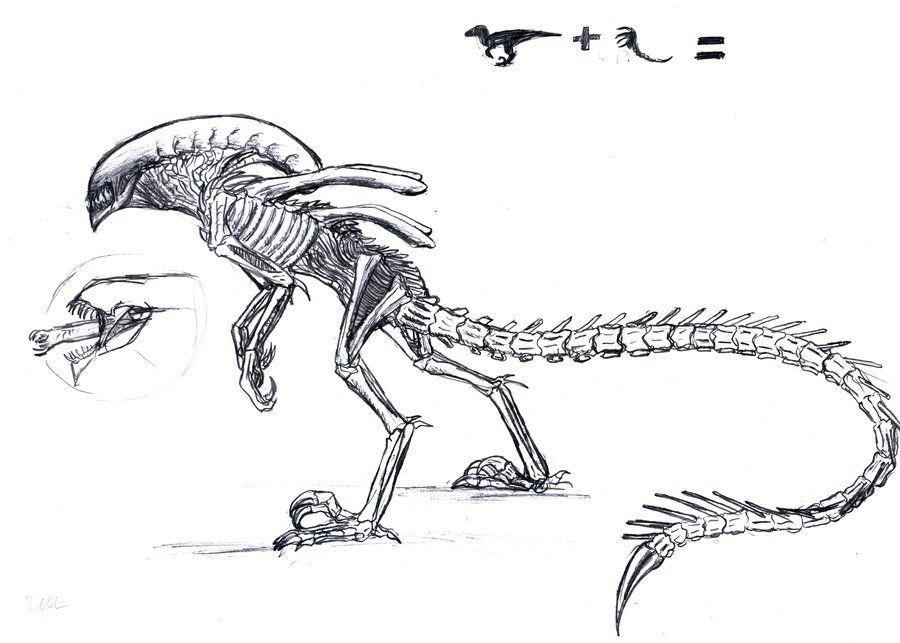 Image Result For Xenomorph Raptor Animais Misticos Mistico Desenhos