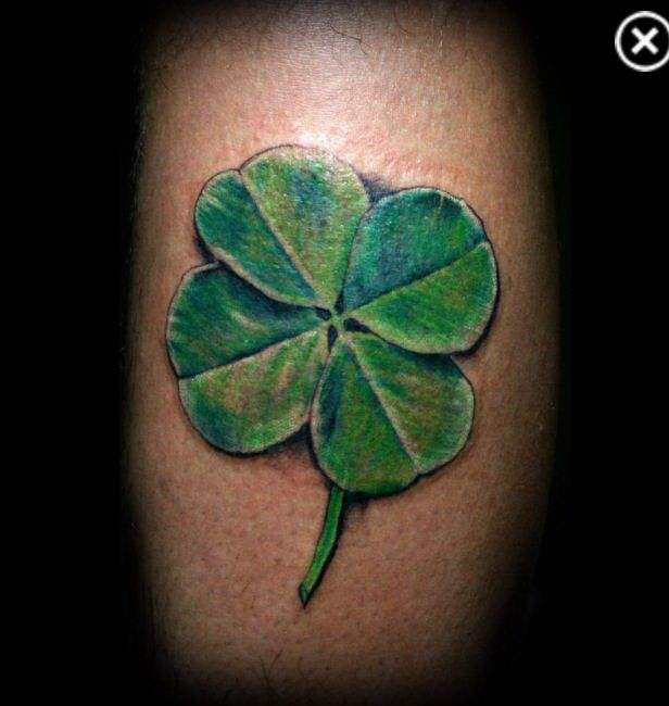 Four Leaf Clover Tattoo Realistic Shamrock Tattoos Four Leaf