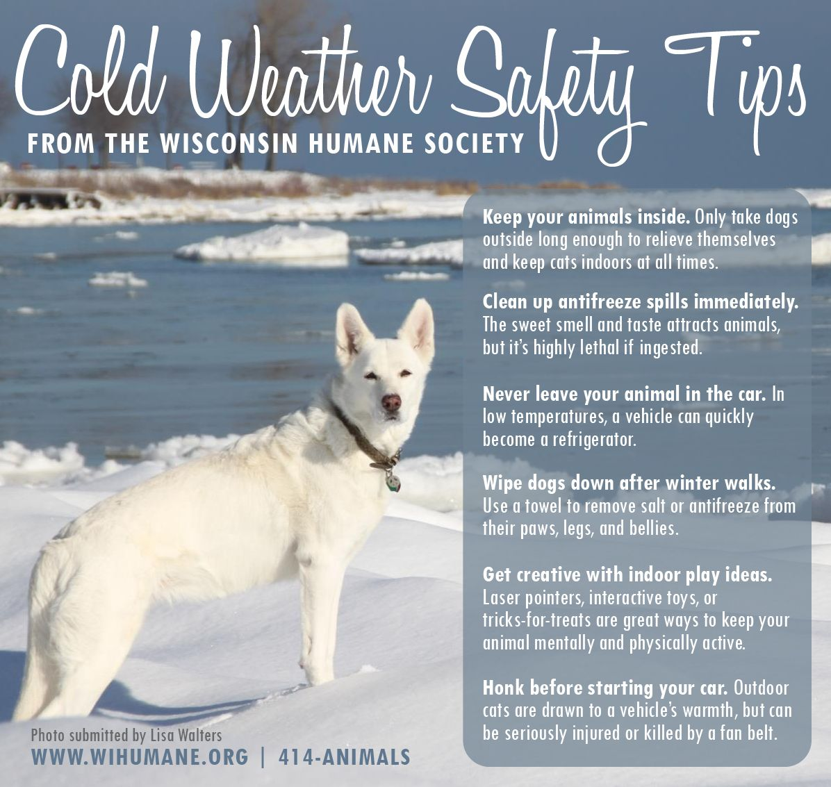 In These Especially Frigid Times It S Important To Remember How