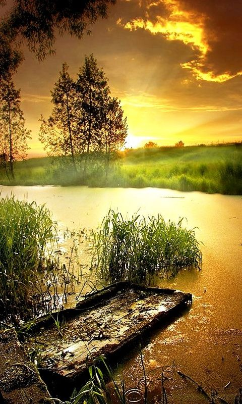 Pin By Annie Mui On Lovely Nature In 2020 Nature Scenery