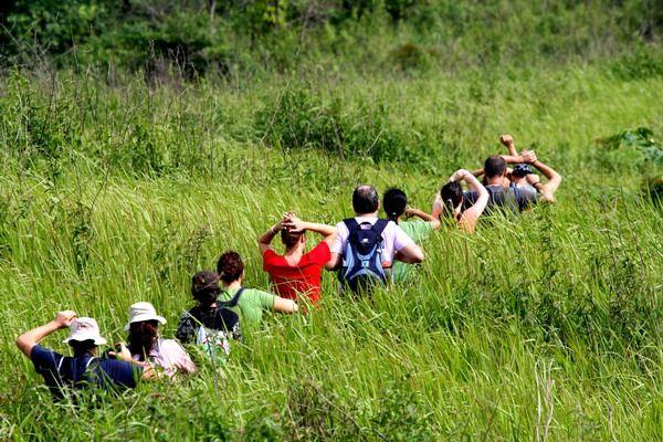 Grupo de viajeros Insolit durante el trekking en Khao Yai
