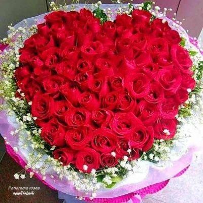 Photo Un Bouquet De Roses Pour Toi Mon Frère Je T Aime