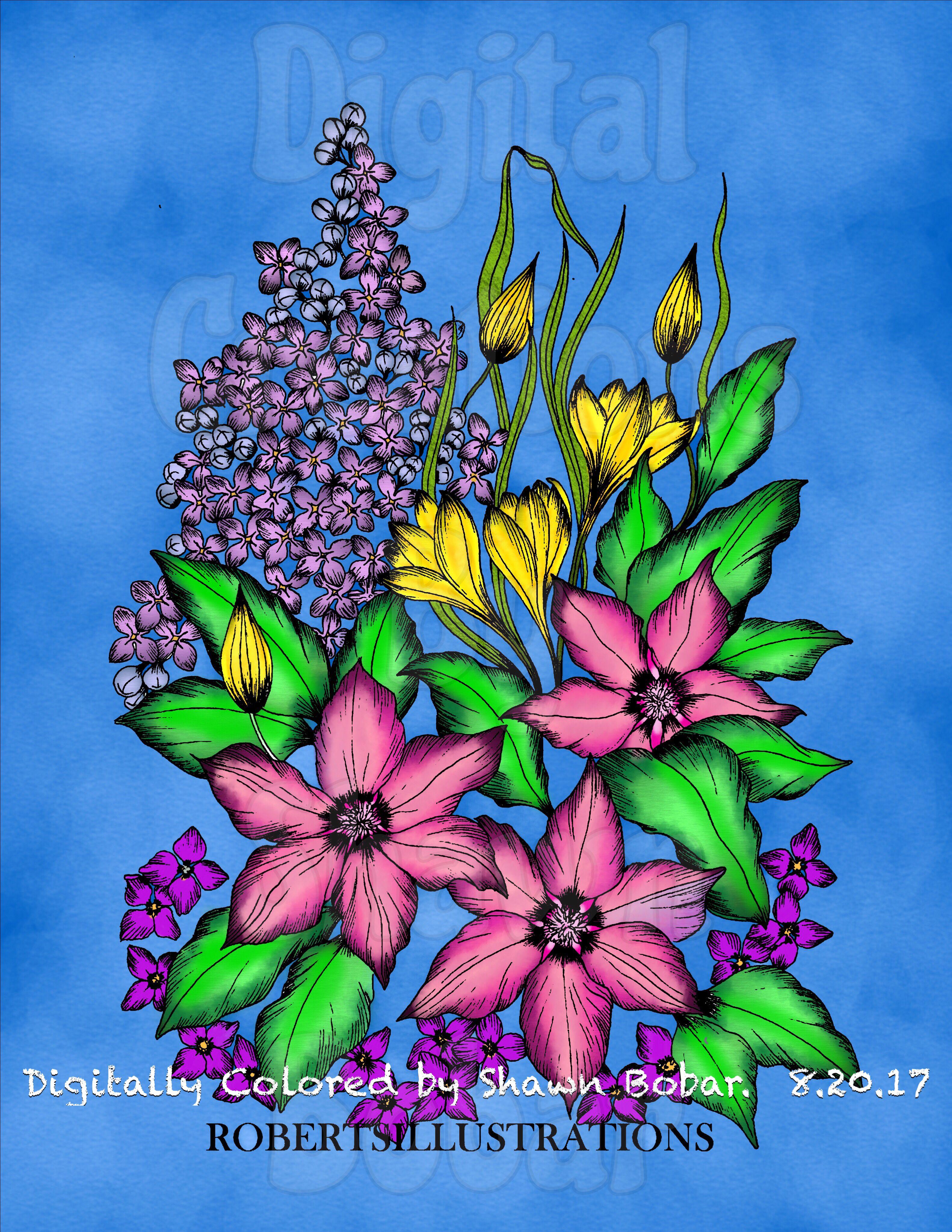 Artist RobertsIllustrations By Rob Roskam Digital Creations