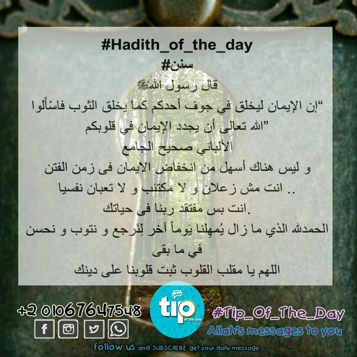 اللهم ثبت قلوبنا على دينك Allah Tip Of The Day Life Daily Sunan Hadith Of The Day Peace Be Upon Him Messages