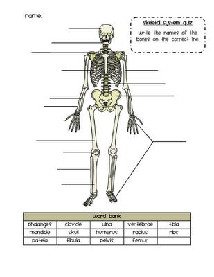 Ead diagram to label