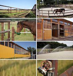 Ausstattung Pferdehof Nudow Reithalle Longierzierkel Galoppbahn Laufband Beheizte Sattelkammer Reiterstubchen Weiden Trock Reiten Pferdehof Pferdeboxen