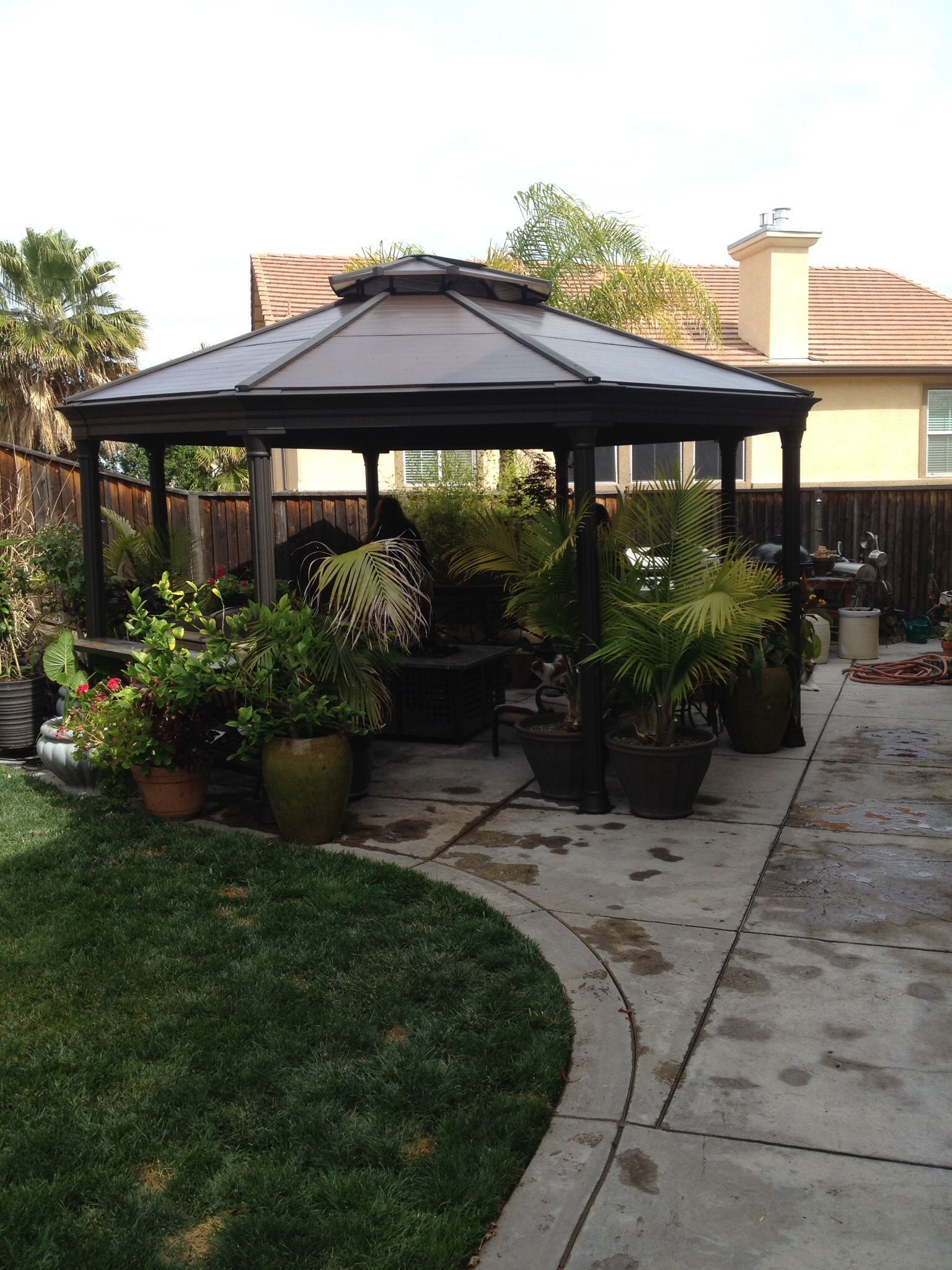 The Costco Gazebo In My Backyard In 2020 Small Garden Gazebo