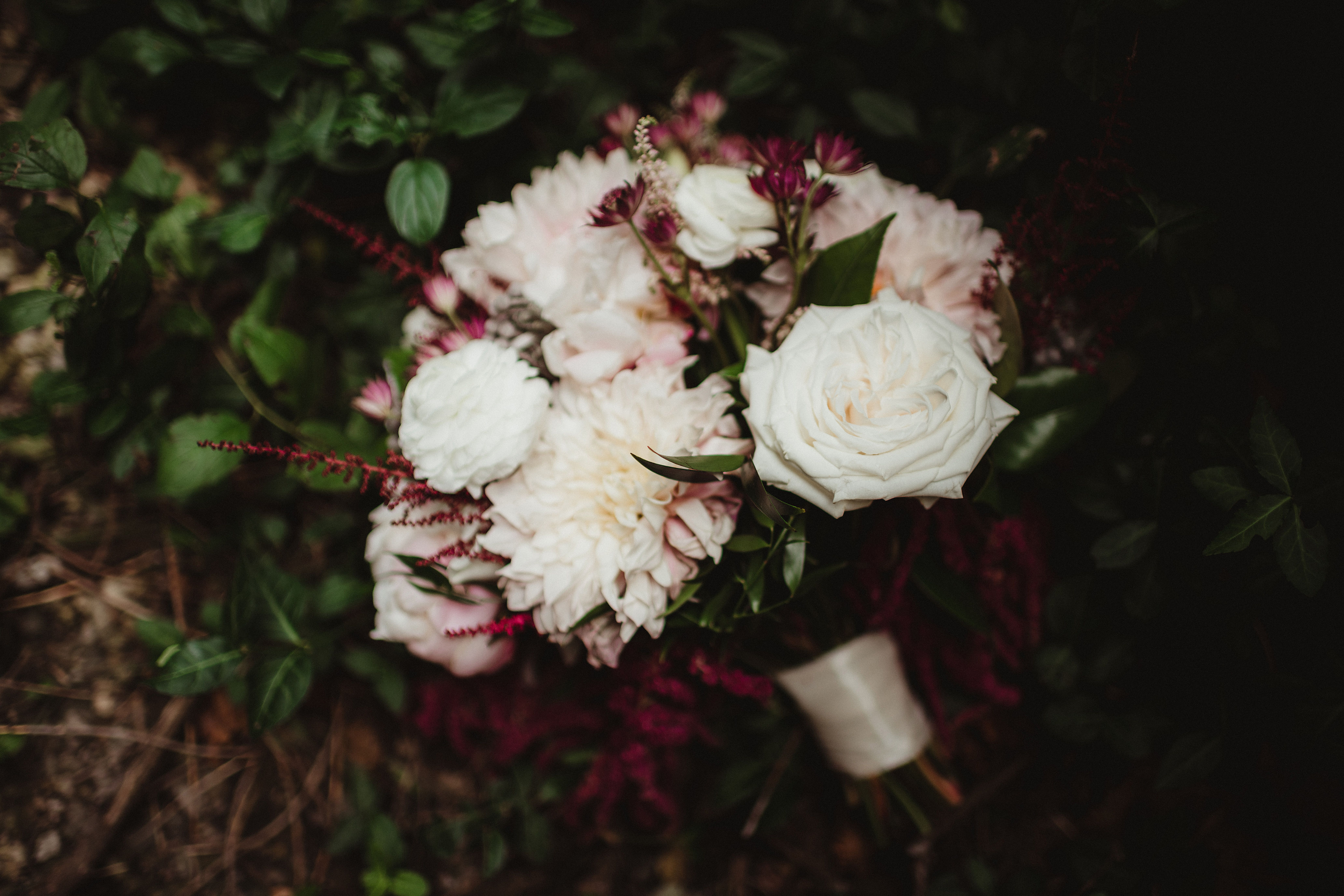 Twig & Olive Photography Summer Midwestern Wedding Trees