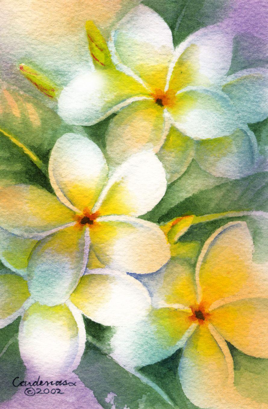 Gallery Susan Cardenas Art Floral Watercolor Loose Watercolor Paintings Flower Art