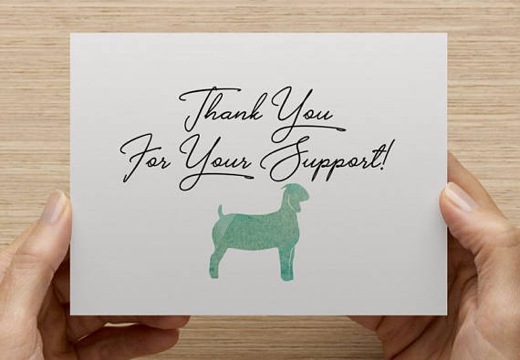 Show Steer Show Lamb Show Goat Show Pig 4 H Ffa Thank Etsy Show Goats Show Steers Appreciation Cards