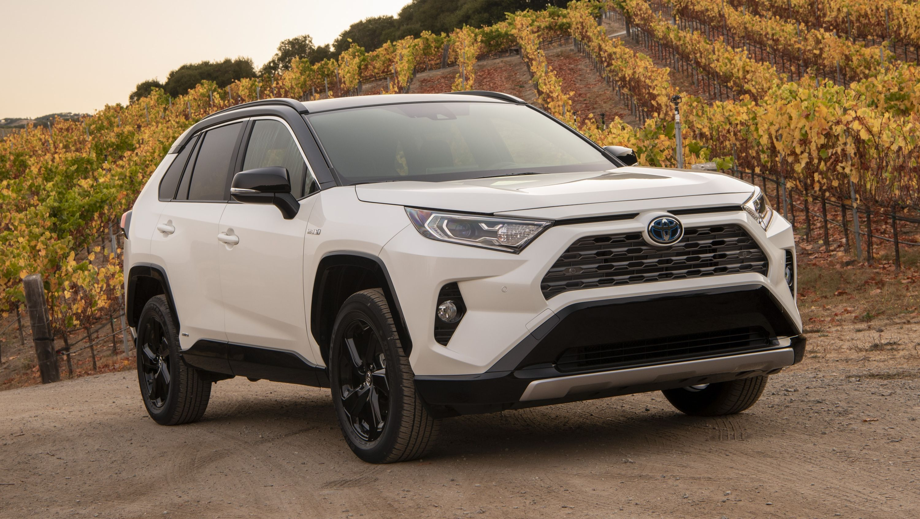 2019 Toyota Rav4 Quirks And Features