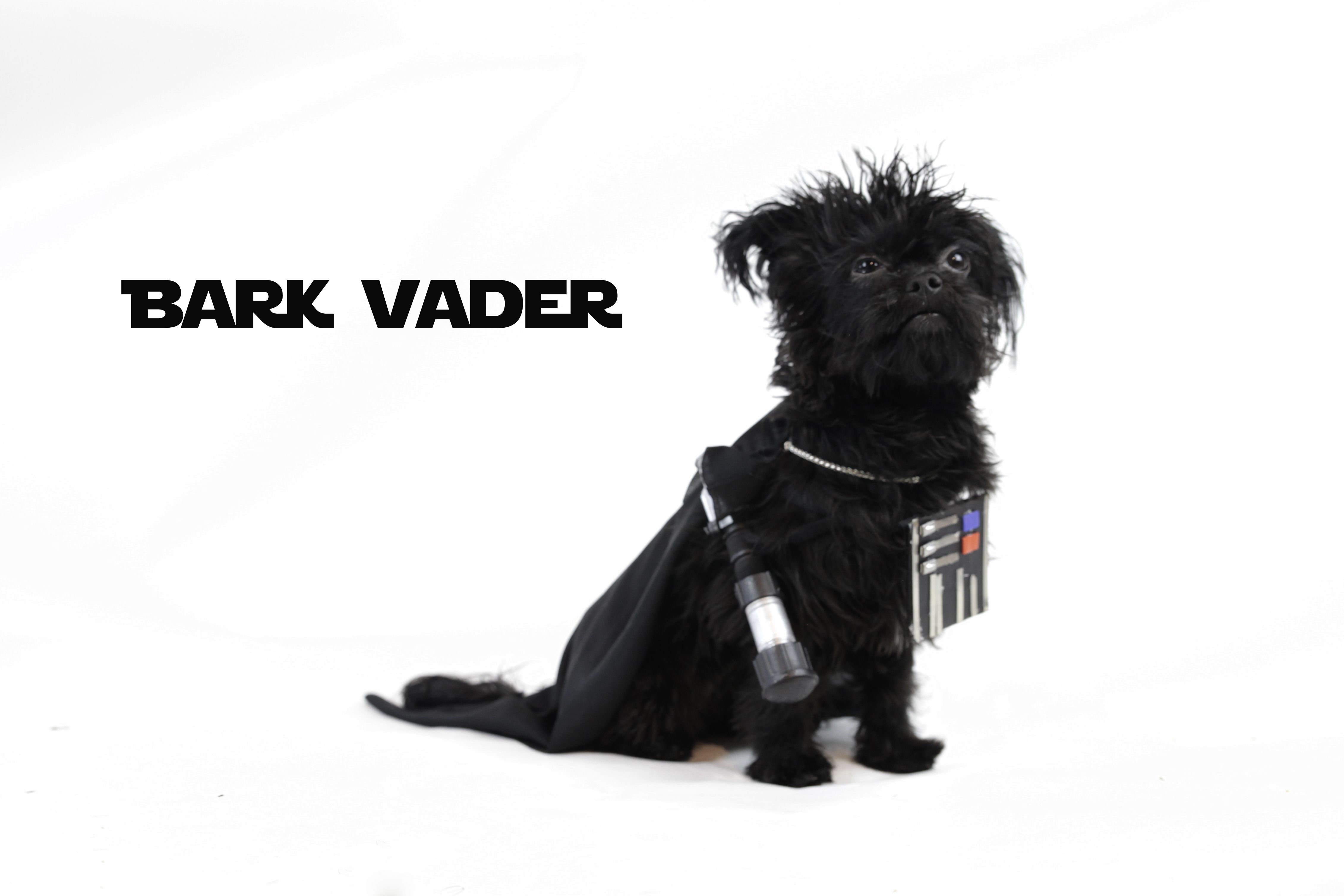 Bark Vader is one of most feared force wielding K9 in the